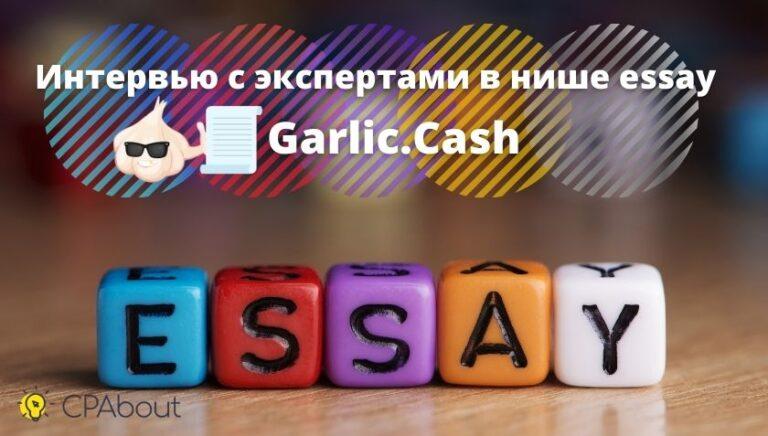 Интервью с экспертами в нише essay – Garlic.Cash